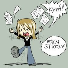 Exams – what stress?